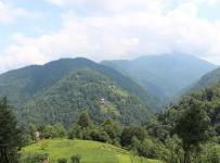 Vice Köyü