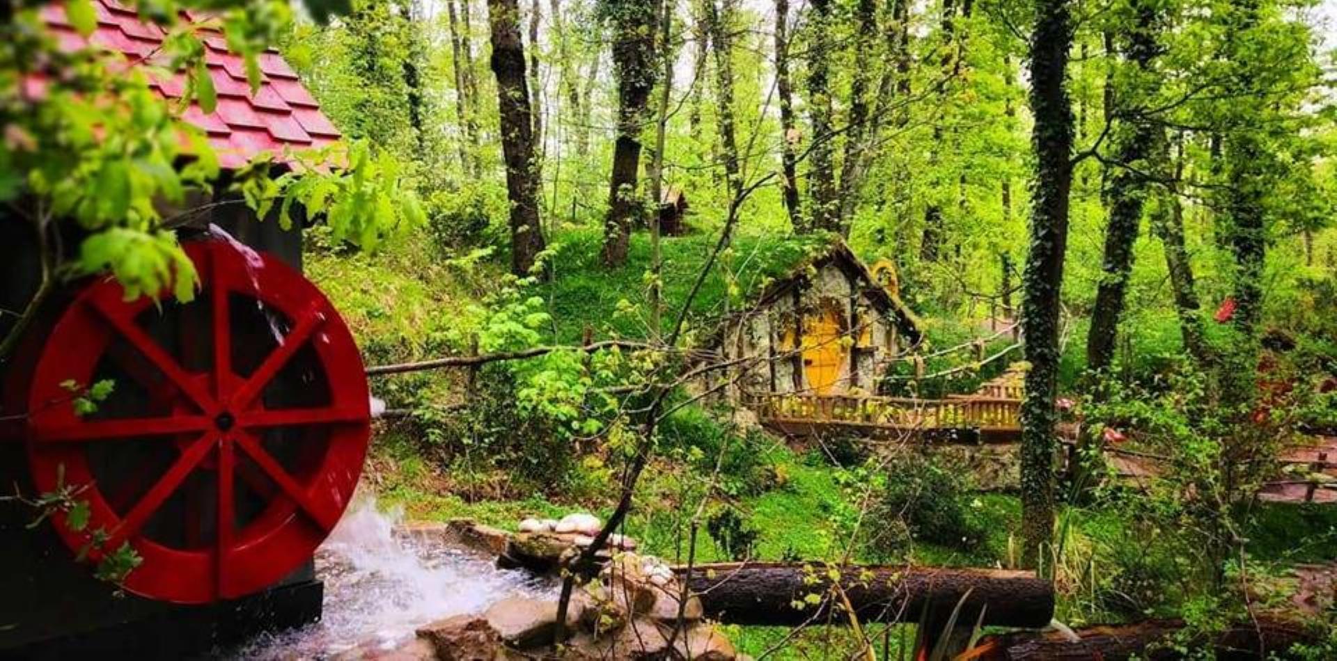 Maşukiye - Sapanca - Kartepe - Ormanya Turu